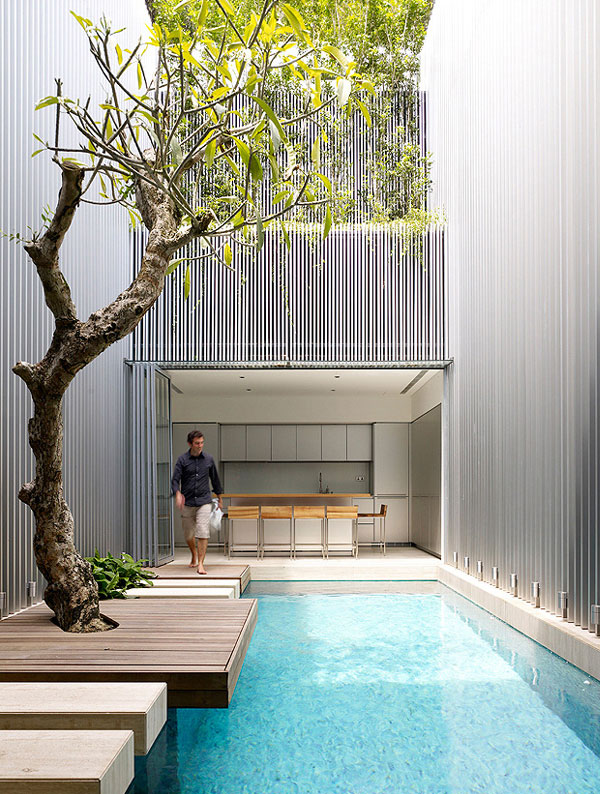 Light Open Plan Living Space tree by the pool