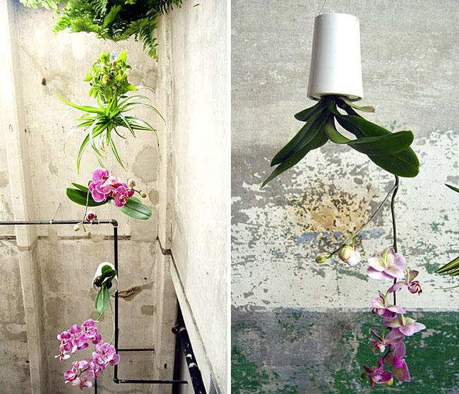 gardening-revolution