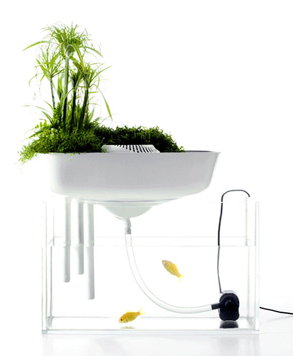 Floating Garden floatinglargeok
