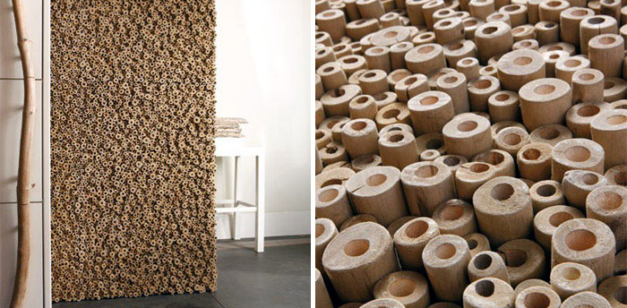 Collection of Wood Pieces organic materials