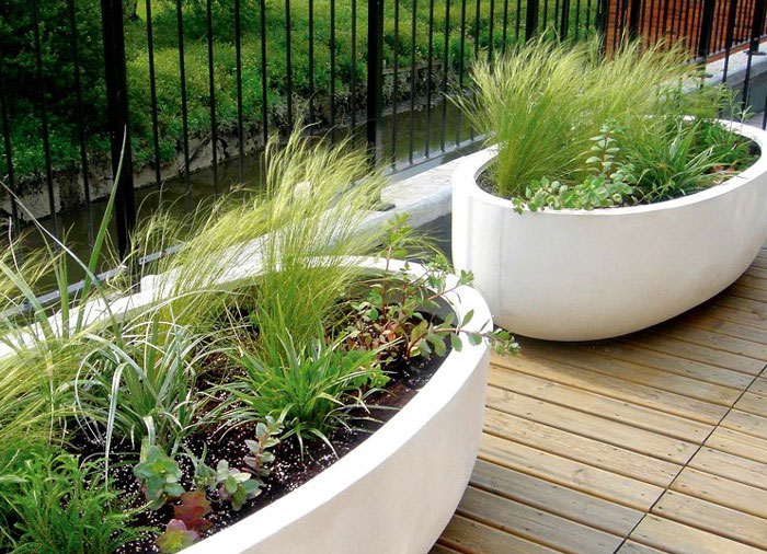 Contemporary plant containers plant containers