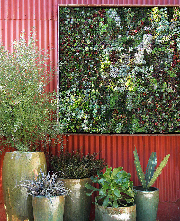 Vertical Succulent Garden vertical surface planting
