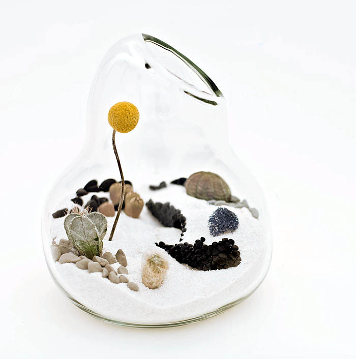 LÍtill Terrariums Tiny, Living Sculpture flugum designs miniature