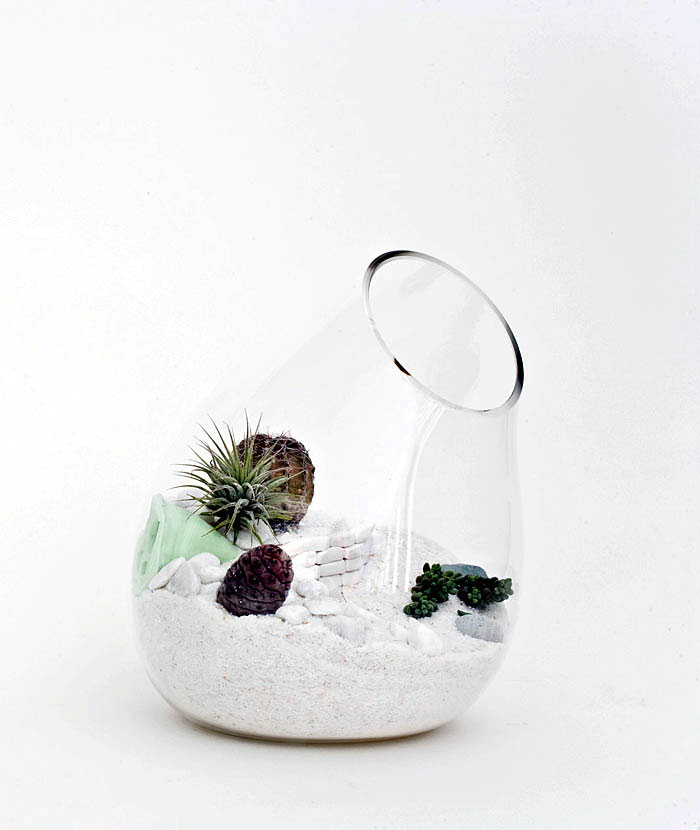LÍtill Terrariums Tiny, Living Sculpture litill mjog terrariums