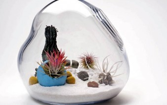 lykt-terrarium