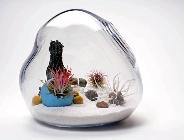 LÍtill Terrariums Tiny, Living Sculpture lykt terrarium