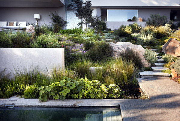 Landscaping Bridle Road Residence  bridle road residence cape town