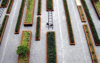 square-greenery