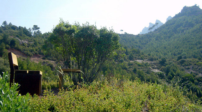 Nature Leisure Area in Montserrat natural park landscape