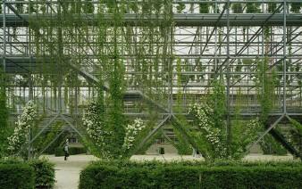 green-wall -park 5