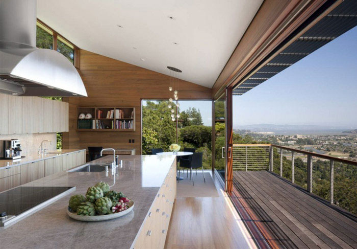 Hillside Residence living roof house interior kitchen