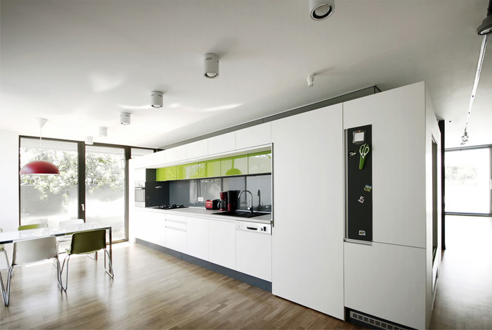 Black on White  dark box house kitchen