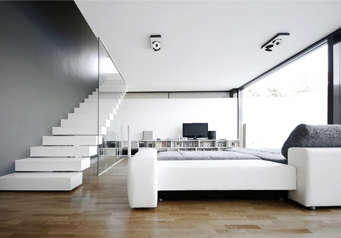 Black on White  dark box house living room