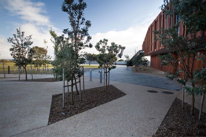 local-park-greenery