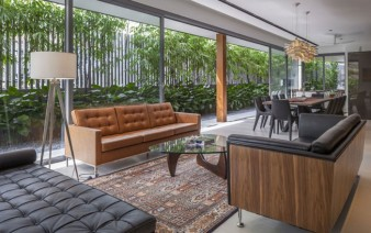 green-wall-living-room-decor1