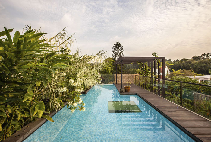 Gorgeous vertical garden house by aamer architects for Koi pond with pool
