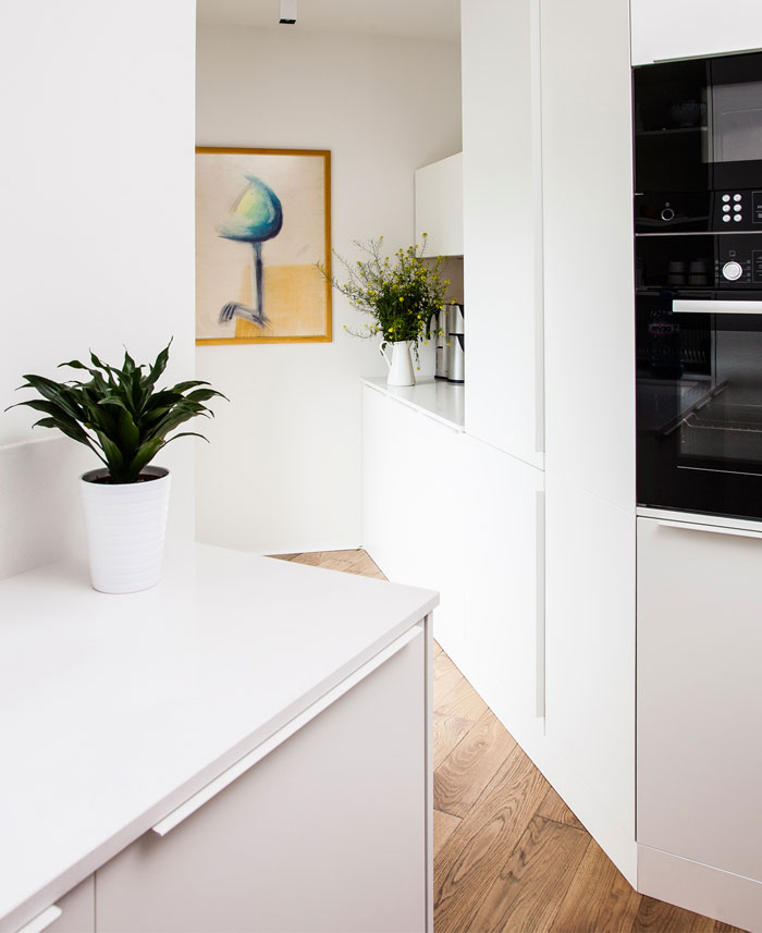 eclectic-contemporary-apartment-kitcen
