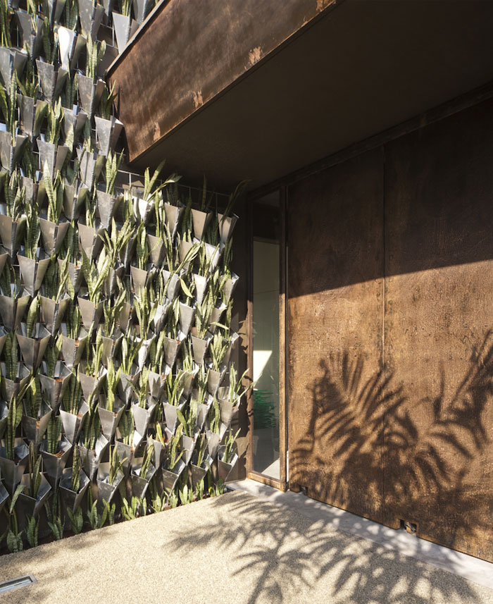 vertical-wall-landscape-architecture