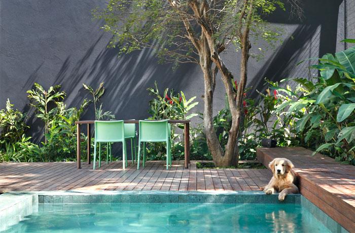 luxuriant-garden-pool-space