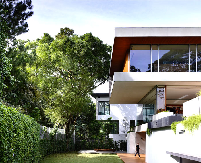 modern-nature-inspired-home