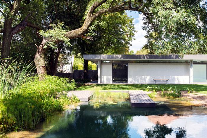 inner-garden-gorgeous-trees-pool