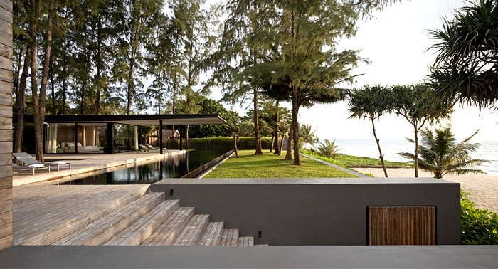 seafront-house-forestland-pine-tree
