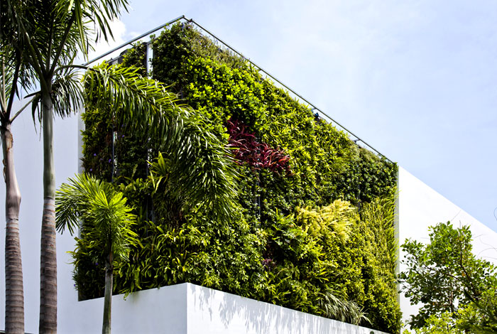 green-wall-house-facade