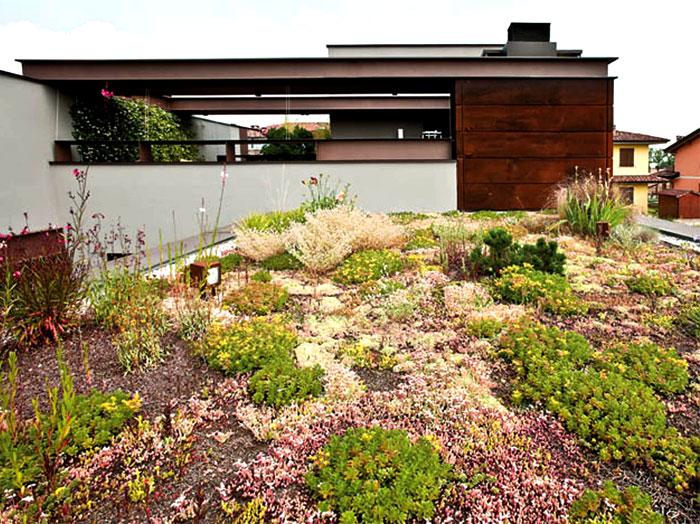 refreshing-untypical-house-suburban-surrounding-7