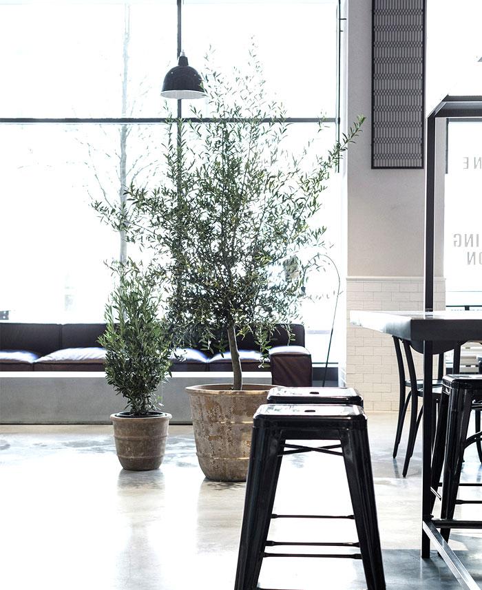 usine-restaurant-13