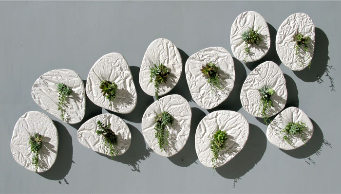 seed-wall-planter
