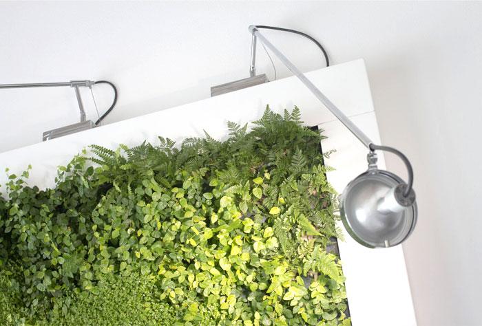 vertical-vegetable-gardens-sundar-italia-3