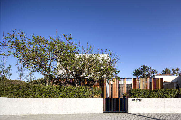 s-house-pitsou-kedem-architects-22
