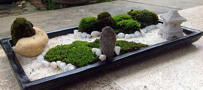 best zen gardens asian garden ideas images jardin japonais miniature cactus with comprar jardin zen - Jardin Japonais Miniature Cactus