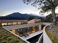 Hillside Residence