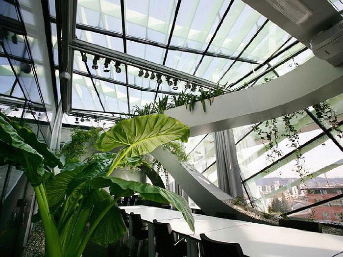 interiorzine landscaping 02