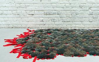 carpet 338x212
