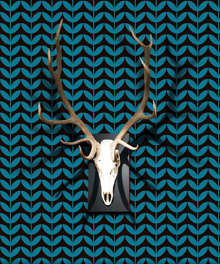 designer-wallpaper