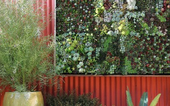 vertical surface planting 338x212