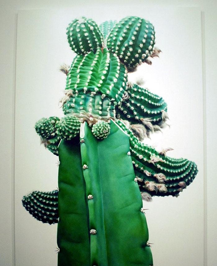 art cactus