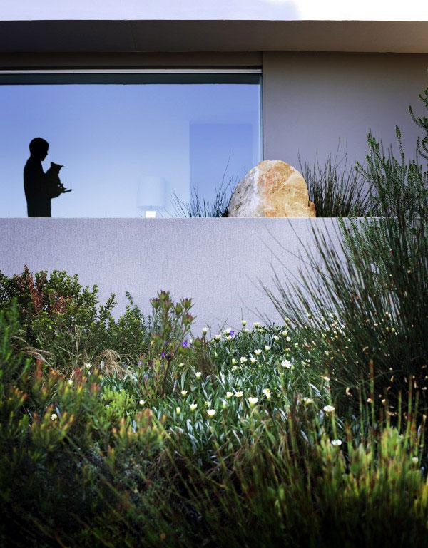 landscaping greenery