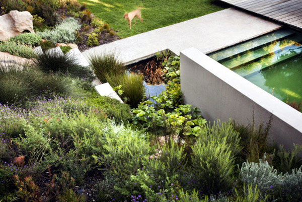 residence greenery