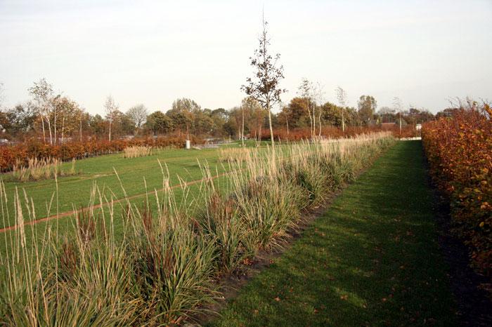 landscape architecture park