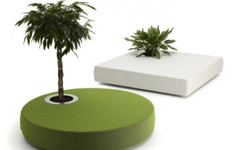 offecctoasis furniture for plants 338x212