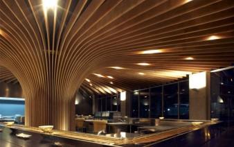 modern dining concept 338x212