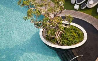 urban garden pool area 338x212