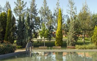 garden pool landscape 338x212