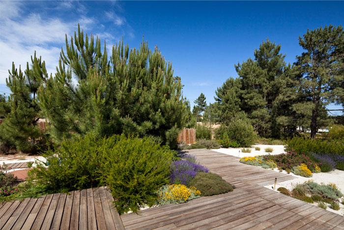 house comporta greenery