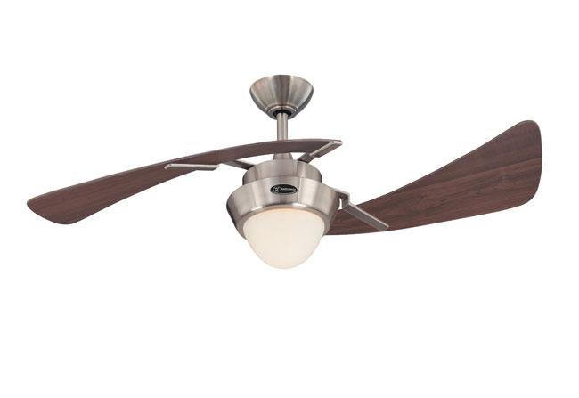 ceiling fan4
