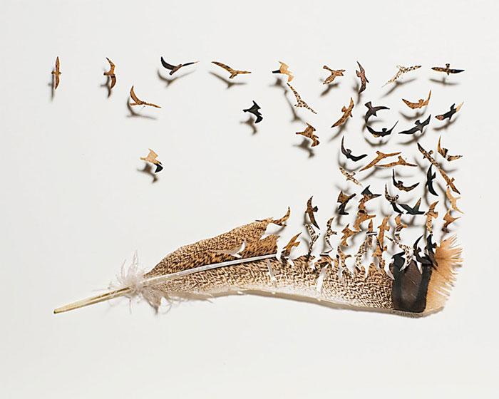 feathers art 3