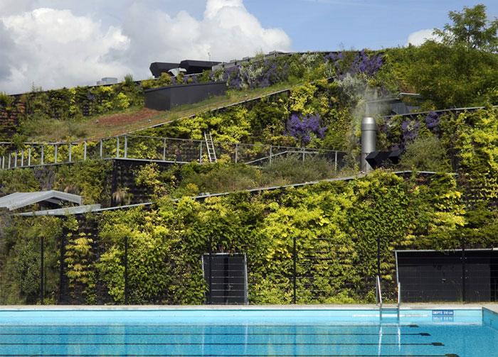 camouflaging-facade-bushy-plants-flowers